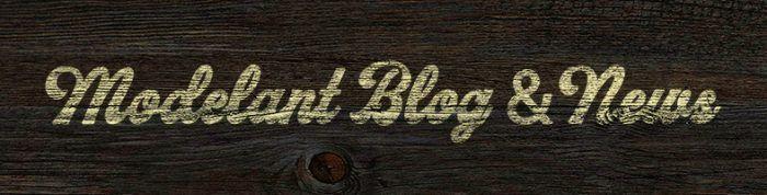 blog i notícies